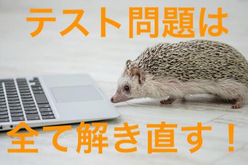 パソコンに向かうハリネズミ